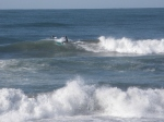 Ocean Blue Day 012